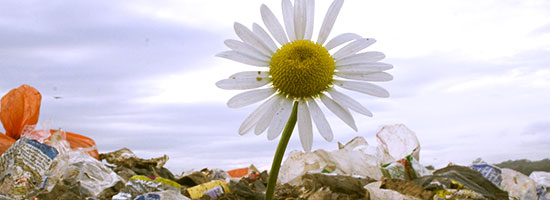 energia-z-odpadov-polnohospodarstvo